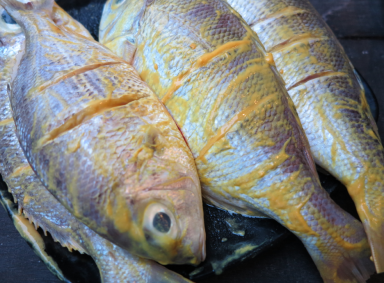 Balinese grilled snapper
